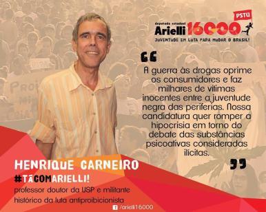 henrique carneiro usp